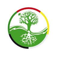 Logo alleen boom